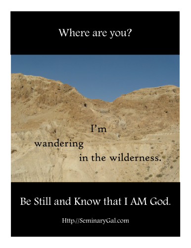 SGL 23 2014Where are you Moses wandering