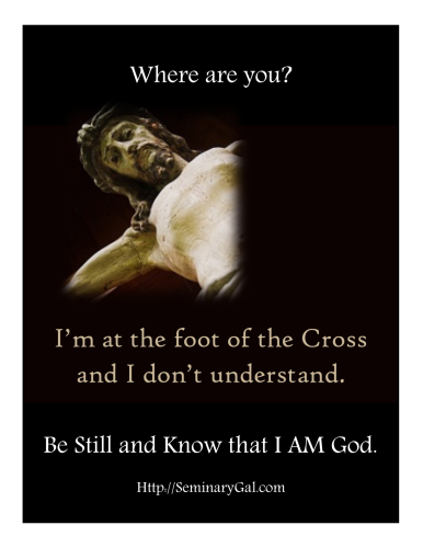 SGL 39 I'm at the foot of the Cross and I don't understand.  Mary1
