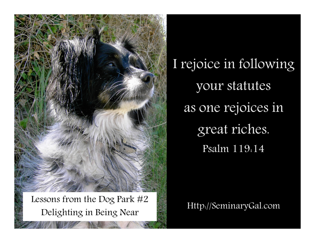 Lessons from the Dog Park 2 Delighting in Being Near