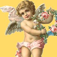angel face crop