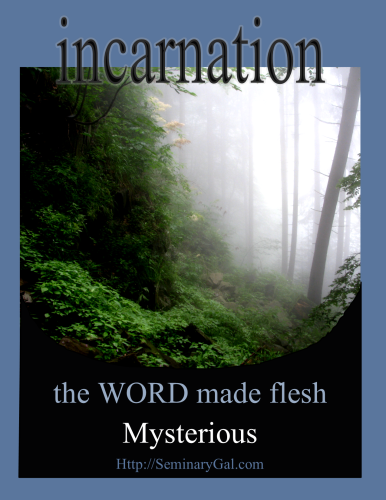 mysterious incarnation