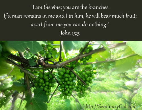 joy in the vine