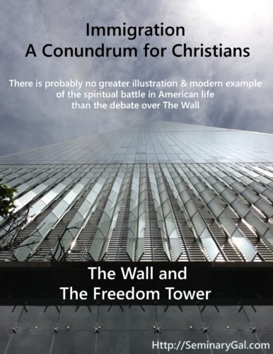 the wall immigration freedom and discernment