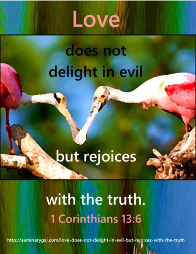 love-does-not-delight-in-evil