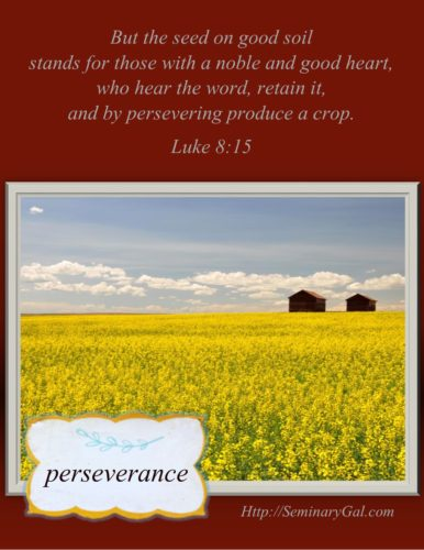 tiny-virtues-perseverance