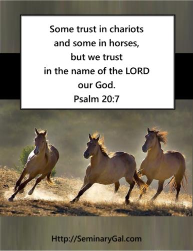 trust-in-chariots-horses